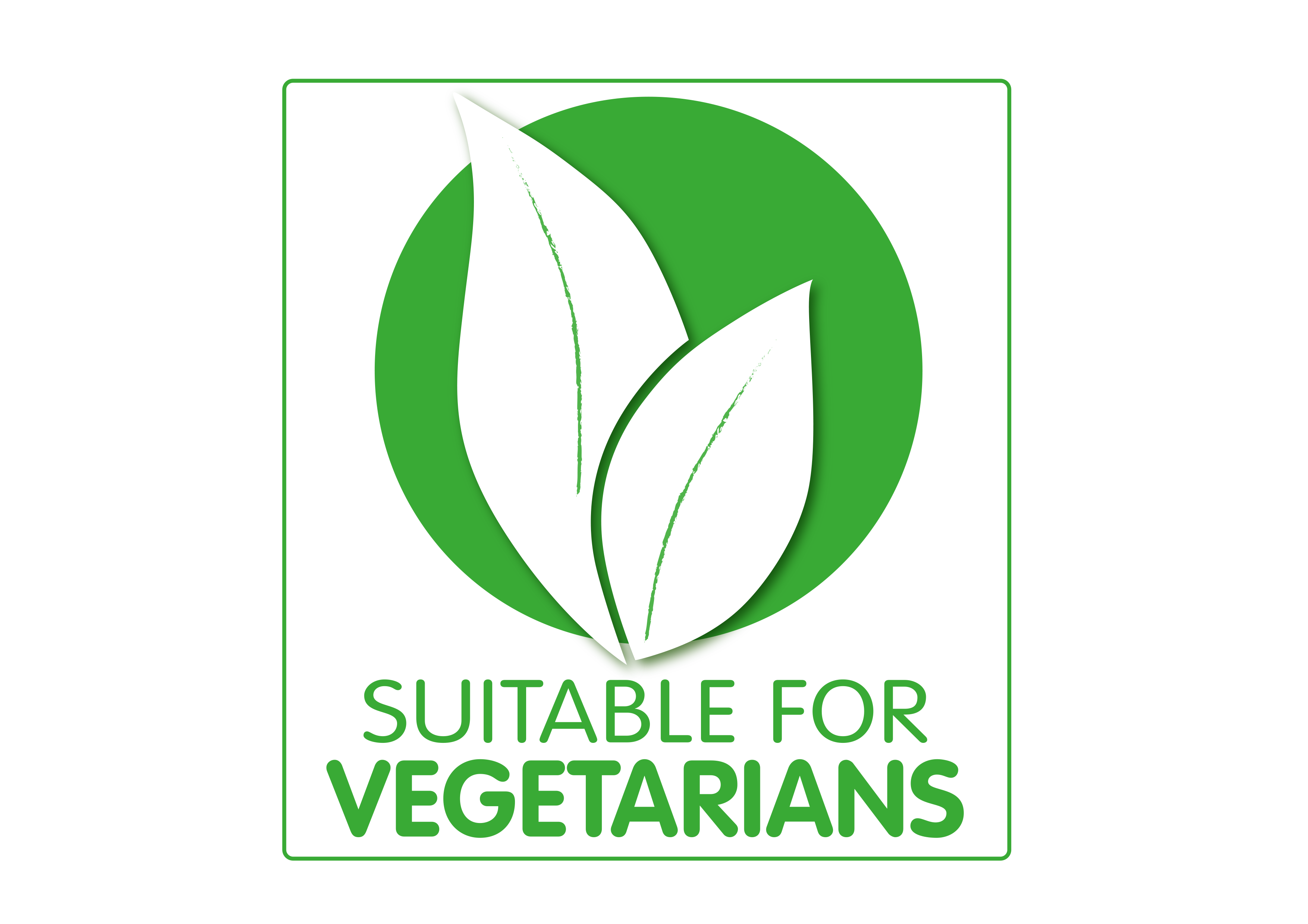 Vegetaarinen