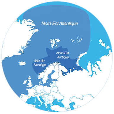 Zone de pêches atlantique nord