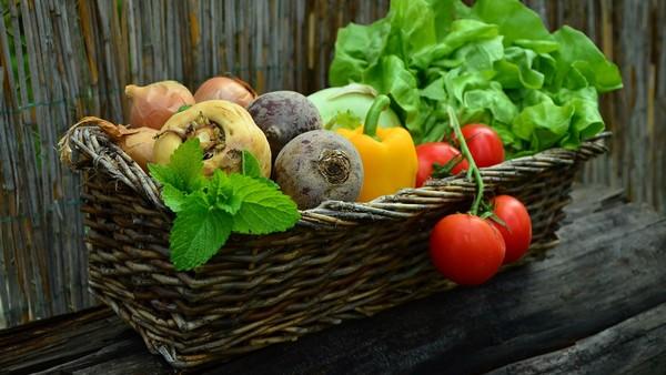 Tout savoir sur les légumes de saison