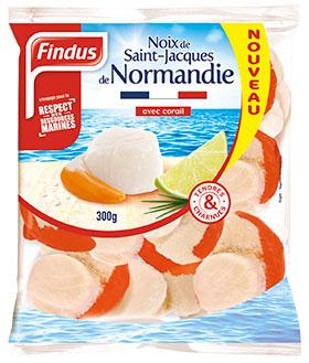 Noix St-Jaques Normandie Fruits de Mer Recette
