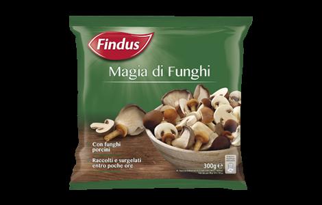 Magia di Funghi - Findus