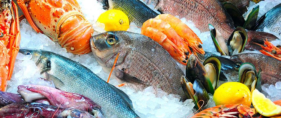 Pesci Magri E Pesci Grassi Quali Sono Proprietà E Benefici Findus