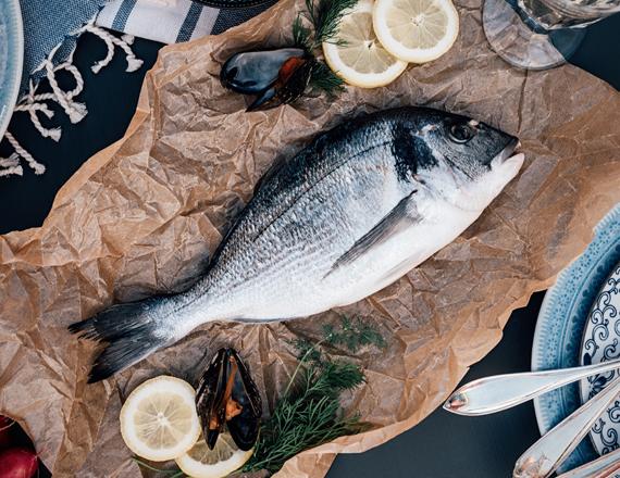 Proteine del pesce – proteine contenute nel pesce