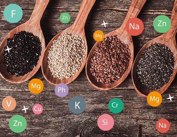 Proprietà dei semi – benefici dei semi - come usare i semi in cucina