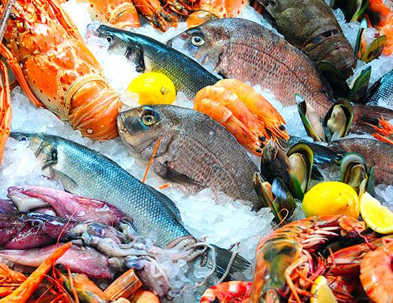 Pesci Proprietà e Benefici - Findus