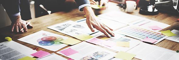Modello Organizzativo Aziendale - Findus