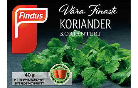 Koriander