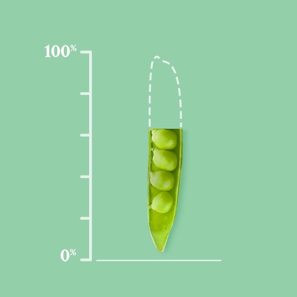 Alla våra grönsaker ska komma från hållbar jordbrukspraxis år 2025