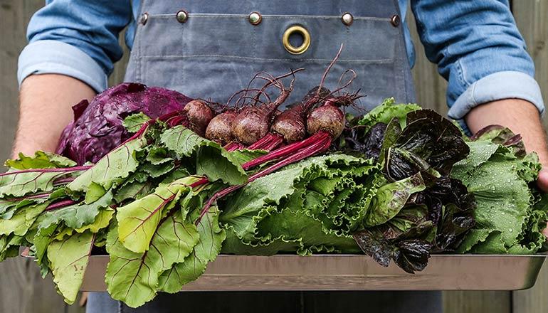 Person i jeansskjorta och jeansförkläde håller i massa grönsaker som röbbeta och sallad