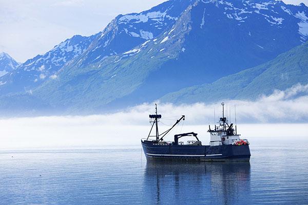 Fangschiff_600x400