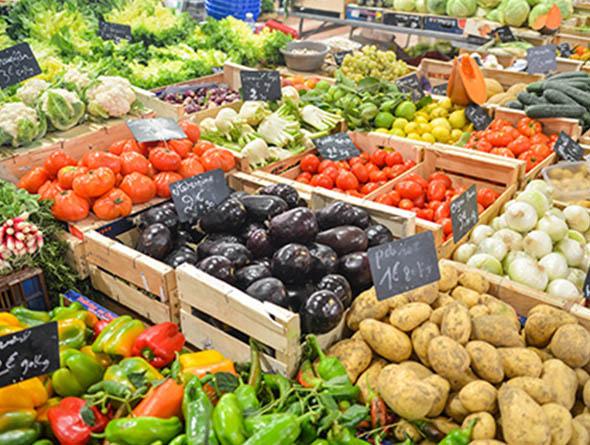 Verschiedene Gemüsesorten in Kisten