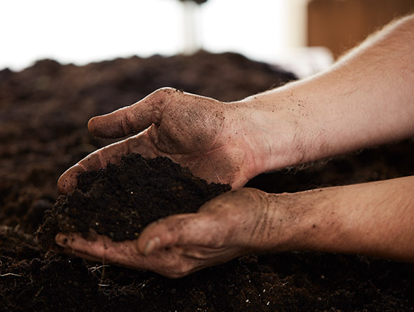 dreckige Hände in Erde