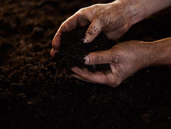 Hände die Erdboden berühren