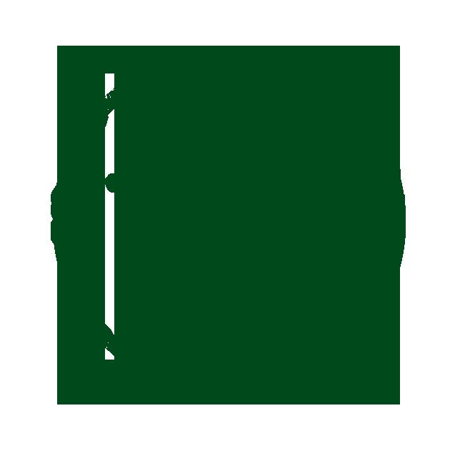 BBQ Icon gruen