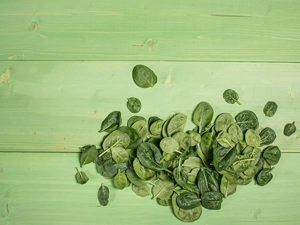 Einzelne Spinatblätter auf grünem Holz