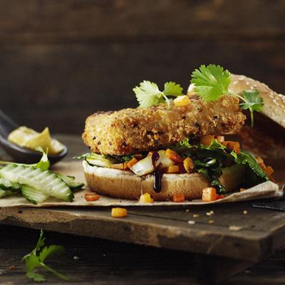 hotspicy visburger