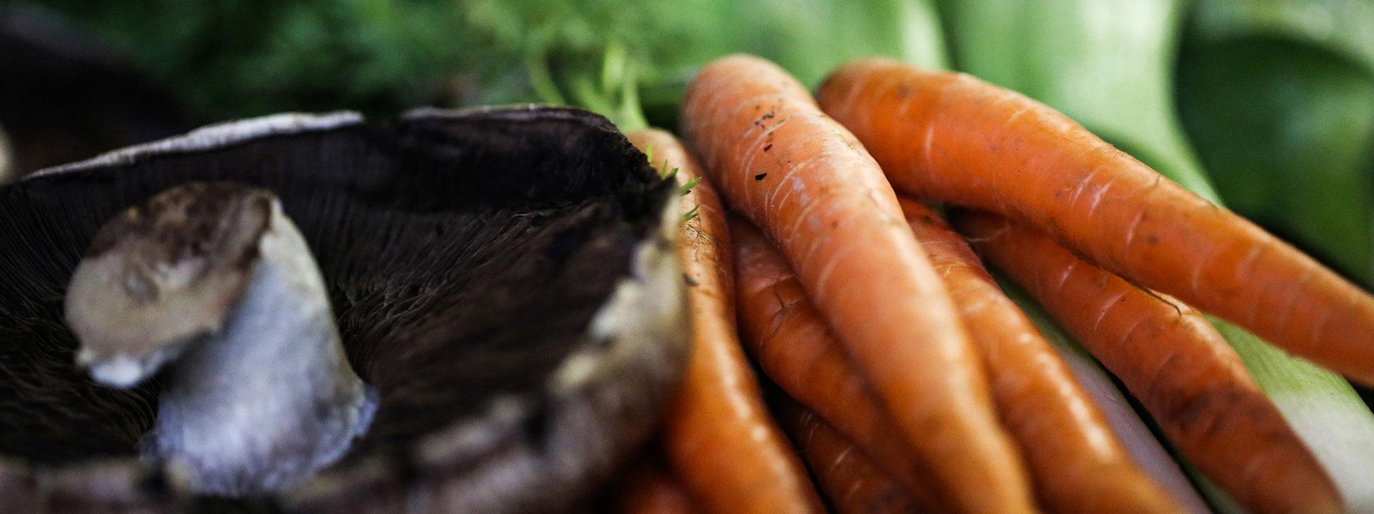 Närbild på svamp och morot